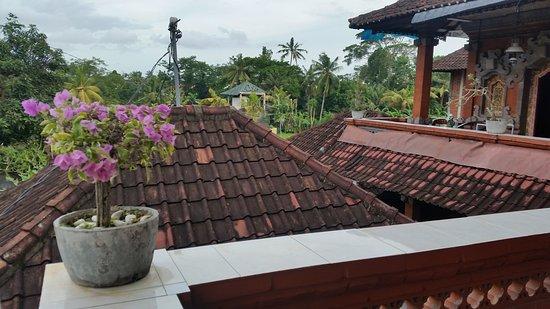 Kori Bali Inn: 20161224_172835_large.jpg