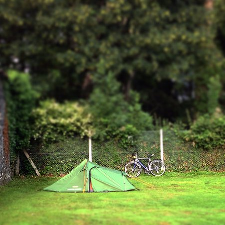 Llanfairfechan, UK: Coed field