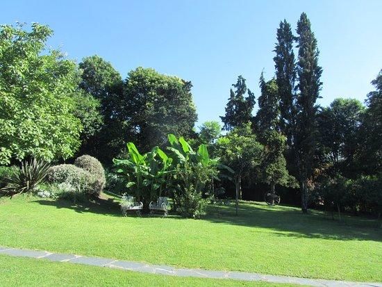 Casa Hernandez: Jardin