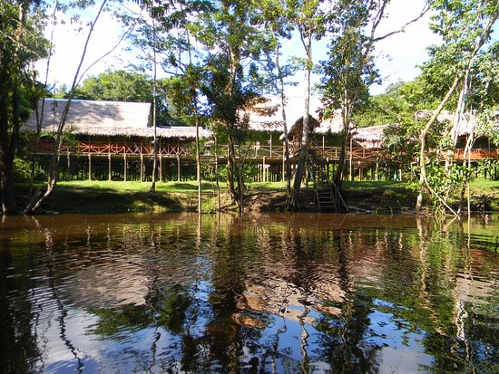Jacamar Lodge Expeditions