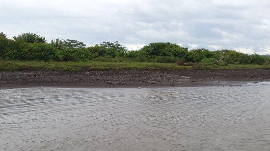 Tarcoles, Costa Rica: 20161227_164650_large.jpg
