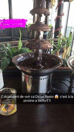 Camus Restaurant Review