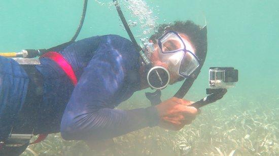 Saint Phillip Parish, Antigua: Bernardo Concepcion (Bernie) Snorkeling Antigua W. I.