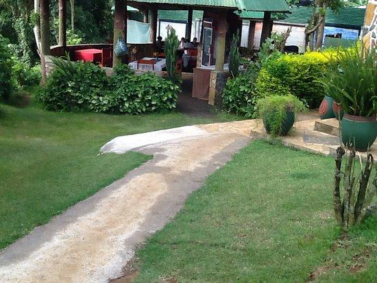 Songota Falls Lodge: Dinning View