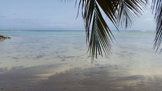 Marie-Galante, Guadeloupe: IMG-20160713-WA0021_large.jpg