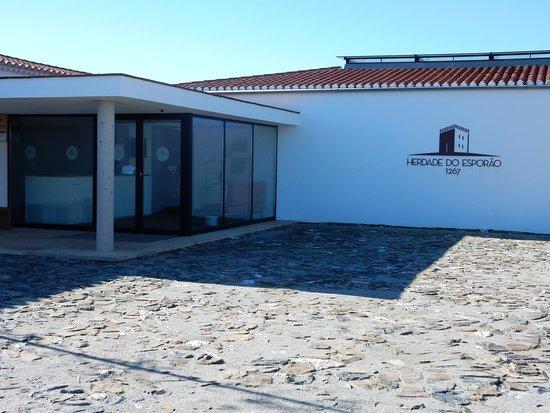 Reguengos de Monsaraz, Portugalia: Entrada