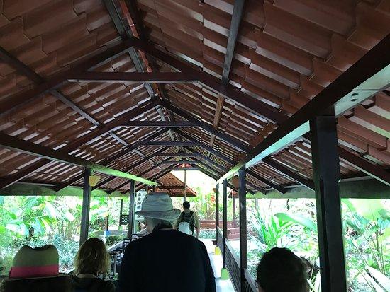 Pachira Lodge: photo5.jpg