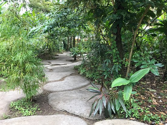 Pachira Lodge: photo9.jpg