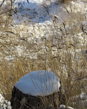 Kamloops, Canada: winter time