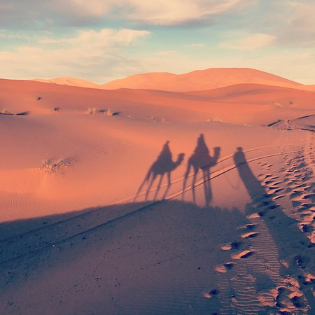 Morocco Active Adventures: Camel ride at sunset