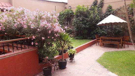 Hotel San Antonio Abad: Jardin