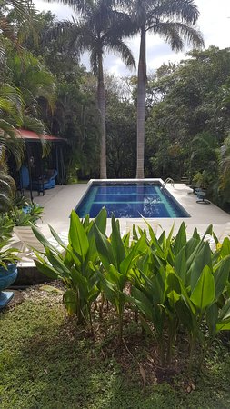 Atenas, Costa Rica: Pool area