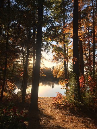 Manitowish Waters, WI: Fall 2015