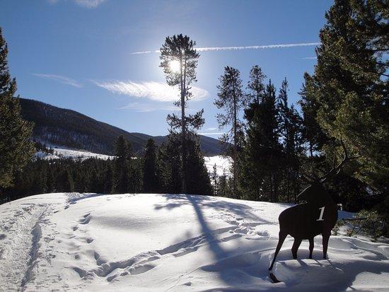 Keystone, Kolorado: Dec 2016 - markers