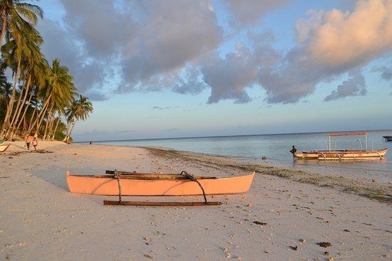 แอนดาไวท์บีชรีสอร์ท: Anda White Beach Resort