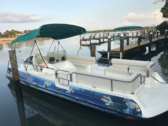 Placida, فلوريدا: 22 foot deck boat