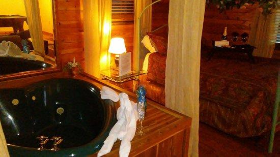 Honeymoon Hills Cabin Rentals: 20170113_175310_large.jpg