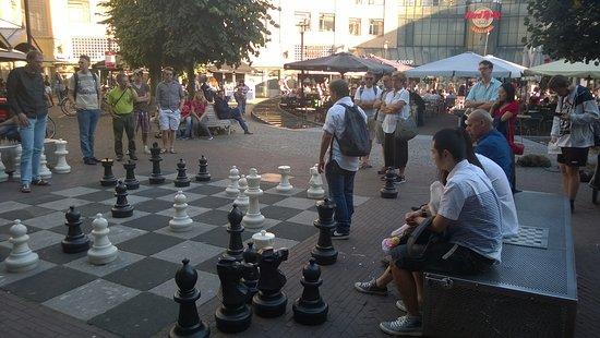 Max Euwe Centrum : Σκάκι