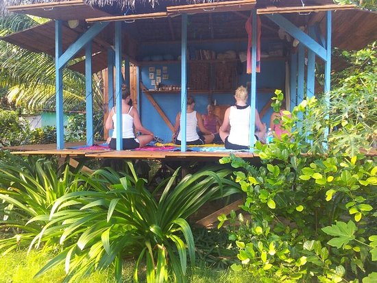 Little Corn Island, Nicaragua: The KarmaShack opens up on 3 sides to a beautiful jungle garden!