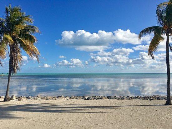 Caloosa Cove Resort & Marina: photo1.jpg