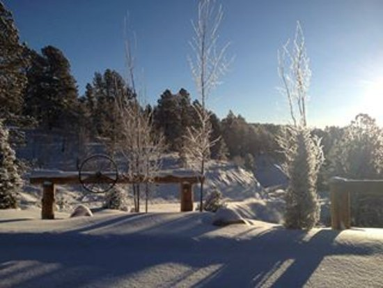 Woodland Park, CO: The Edgewood Inn offers a beautiful view out every window!