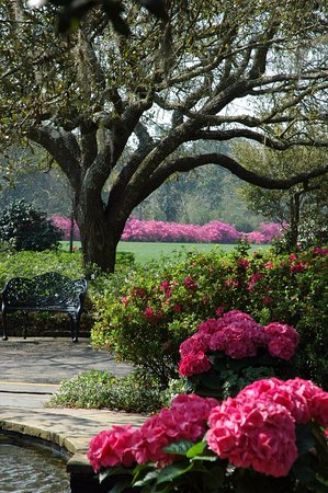 Bellingrath Gardens And Home Theodore What To Know Before You Go Tripadvisor