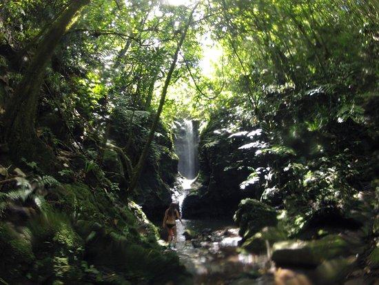 Teahupoo, Polinezja Francuska: Amazing day!
