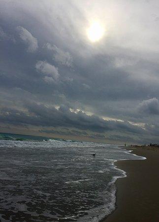 Gambar Jensen Beach