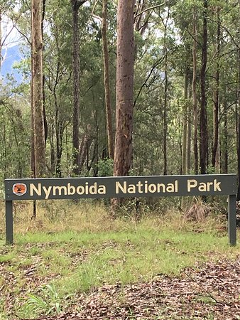 Nymboida National Park