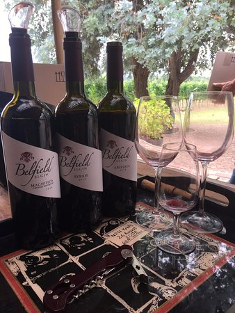 Elgin, South Africa: Wine tasting with Mike