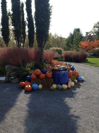 Coastal Maine Botanical Gardens: Pumpkin on display.
