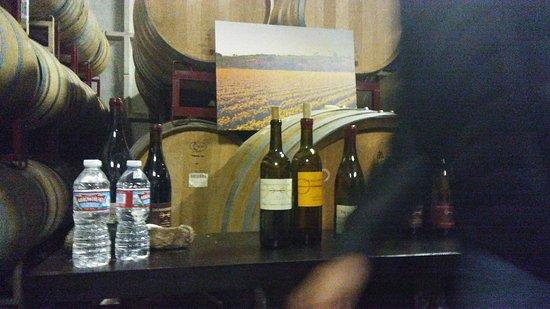 Santa Ynez, CA: Sustainable Vine Wine Tours