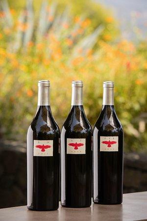 Healdsburg, Californien: Hawkes Single Vineyard Cabernets