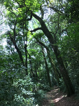 Parque Longines Malinowski