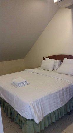 歐佩普萊斯酒店照片