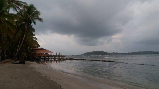 Carenero Island, Panama: Splendid view