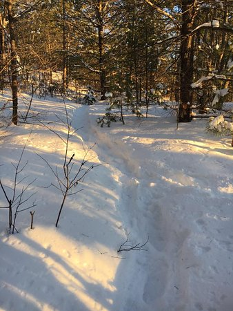 Pembine, WI: Trail in winter