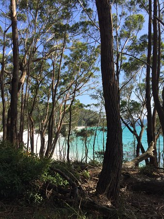 Hyams Beach, Australia: photo4.jpg