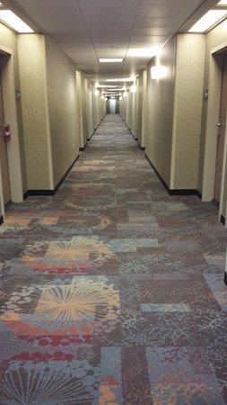 Palmdale, Californie : Hallway