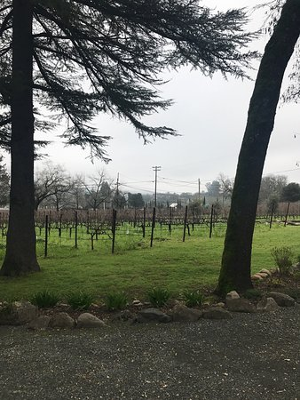 St. Helena, Καλιφόρνια: photo2.jpg