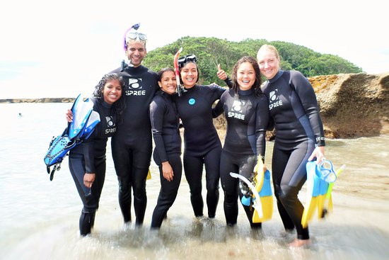 Matakana, Nueva Zelanda: Group Snorkel