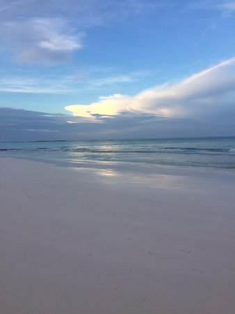 Governor's Harbour, Eleuthera: The beautiful beach in front of Tippy's