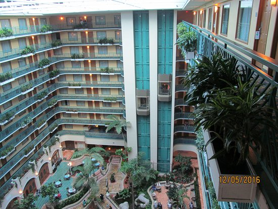 Picture Of Embassy Suites Miami International
