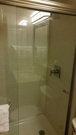 BEST WESTERN PLUS Peak Vista Inn & Suites: Stand Up Shower