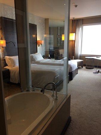 Très belle chambre, spacieuse avec vue sur la ville . Salle ...