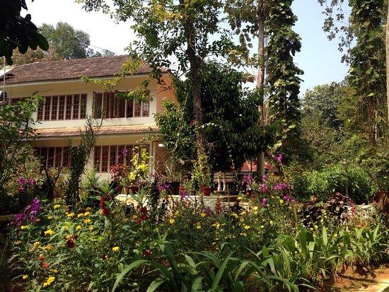 Karimannoor, الهند: photo0.jpg