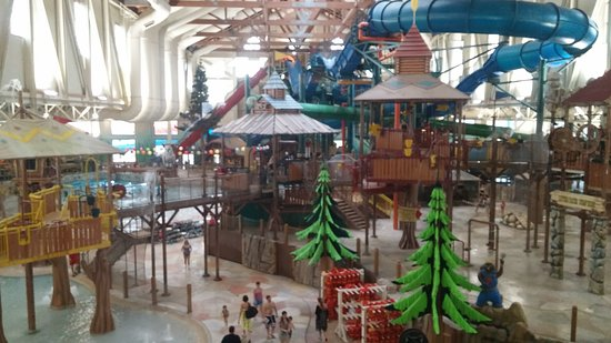 Great Wolf Lodge: 20170114_093559_large.jpg