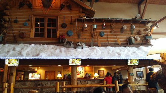Great Wolf Lodge: 20170115_104451_large.jpg
