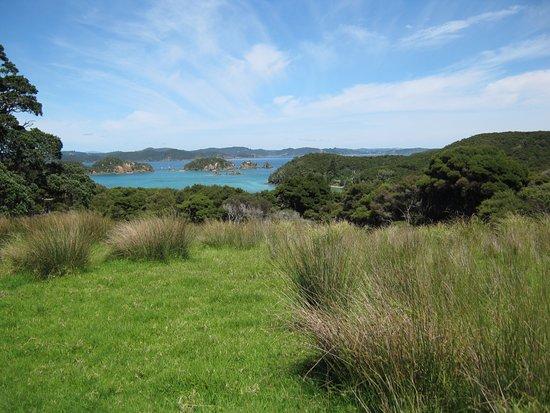 Paihia, Nueva Zelanda: Picturesque landscape of Urupukapuka island