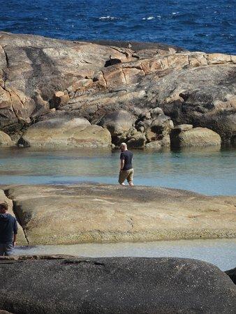 Denmark, Australia: greens pool